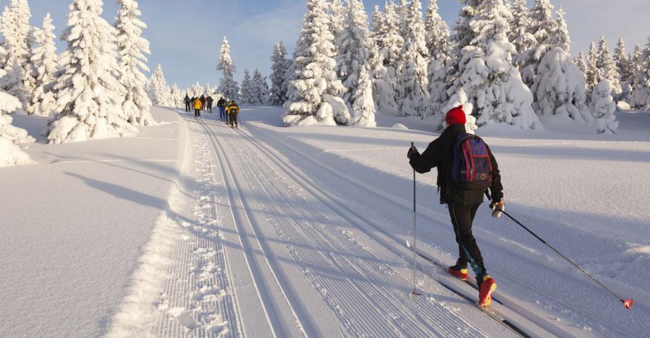 Langlauf Reise nach Lappland buchen