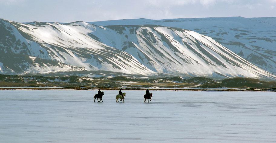 Island Pferde See Reisen