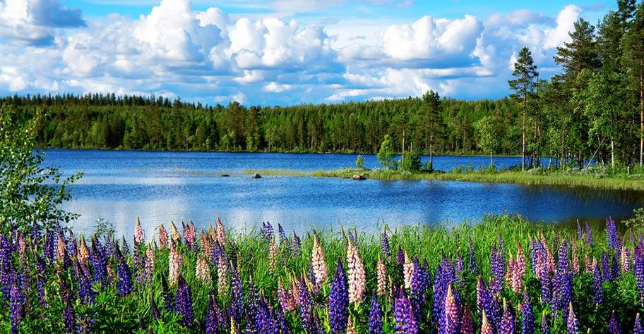 Schweden Länderinformationen und Reisetipps