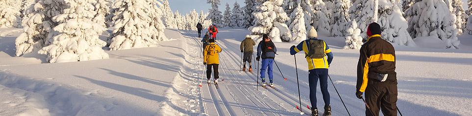 Lappland Langlauf