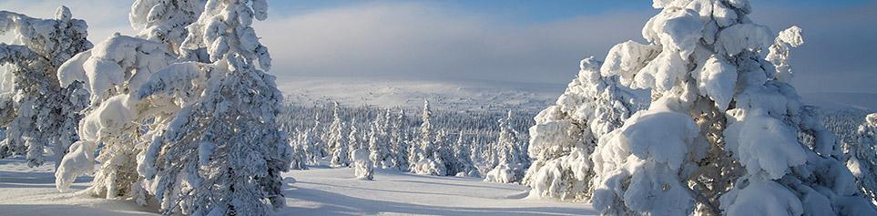 Lappland Reisetipps